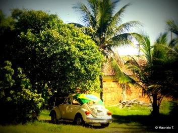 Fusca Brasil
